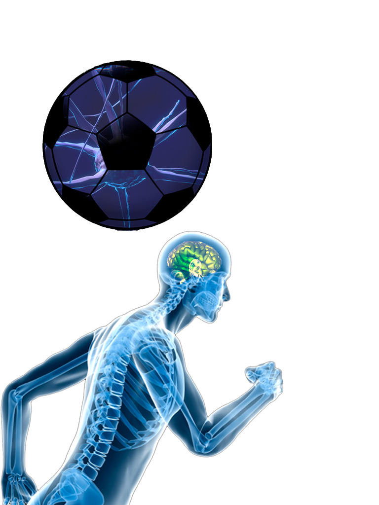 neuroentrenamiento para el desarrollo del deporte